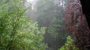 27 Vista desde el apart con lluvia (FILEminimizer)